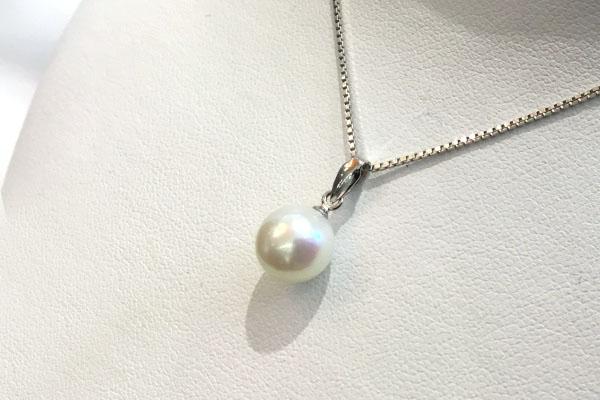 リフォーム後の真珠